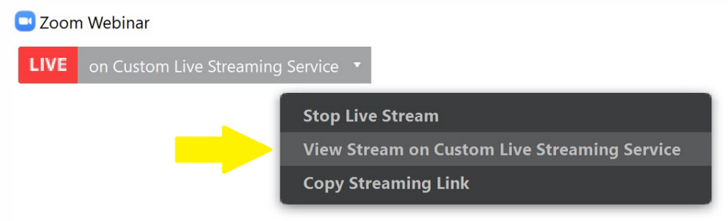 From the top of the Zoom, window there is a drop-down menu to view the live streaming service.